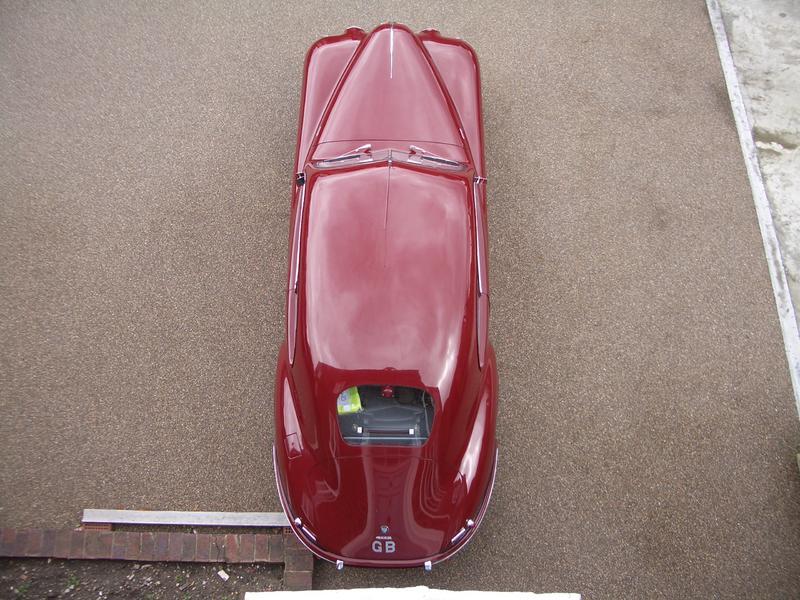 Delectable rear end ?